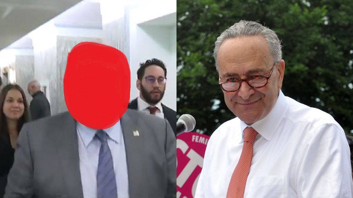 Schumer mystery guest