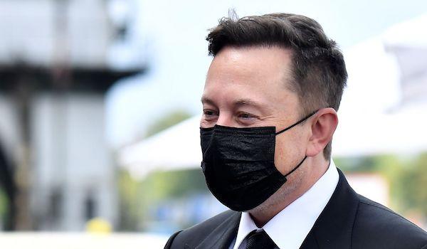 covid test elon musk pandemic