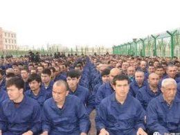 China slave labor Uyghur muslim Xinjiang
