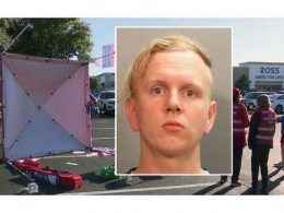 liberal gregory timm arrest trial