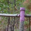 If You See THIS on a Fence Post, Quickly Turn Away and Go Back